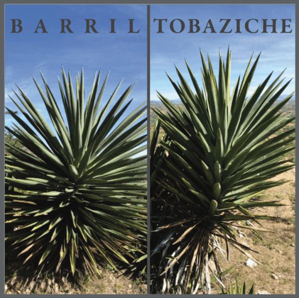 Barril-Tobaziche 375 mL – Gregorio